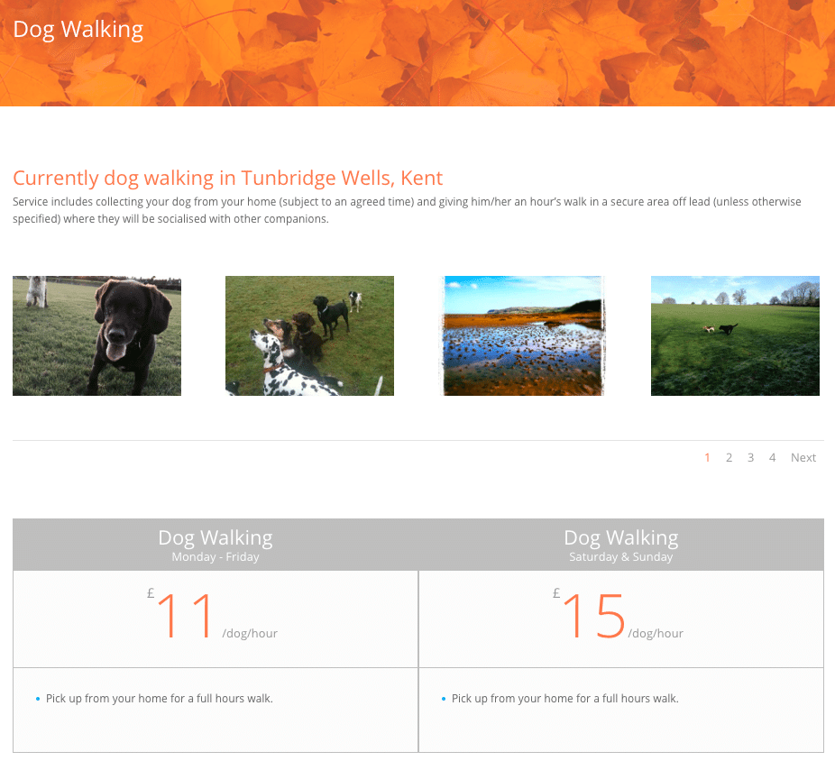 Puppy Pals Dog Walking Service Page