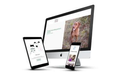 Dog Walker Website Design Feature – Charlie Bears Pet Care